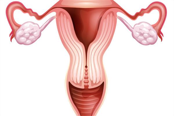 卵巢衰退.jpg