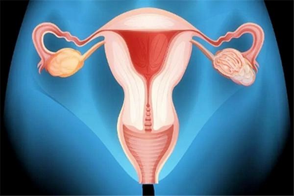 卵巢早衰副本.jpg