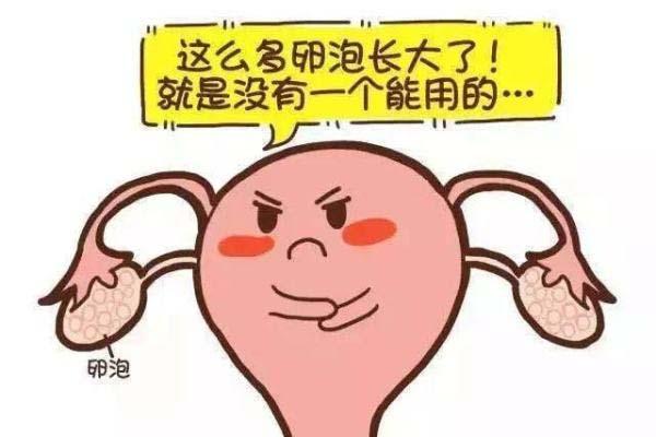 多囊卵巢什么原因引起的.jpg