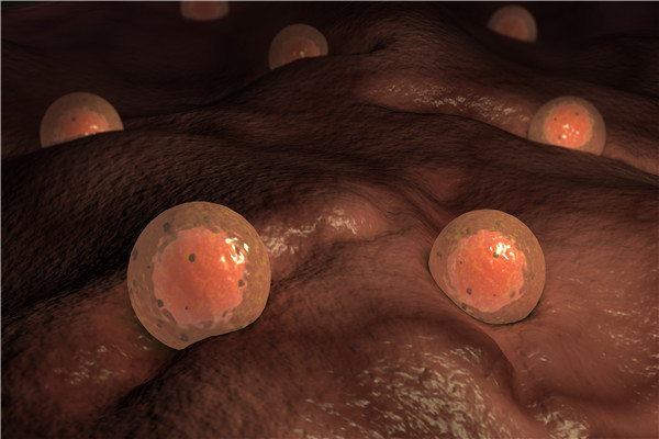 多囊是卵巢早衰吗?吃什么对卵巢好?
